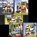 コンゴ共和国切手  2012年 馬 小型シート コレクション