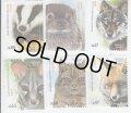 ポルトガル切手 2016年 タイリクオオカミ ヨーロッパジェネット アカギツネ 動物 6種
