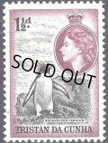 トリスタンダクーニャ 切手 1954年 クイーンエリザベス2世  イワトビペンギン 1種